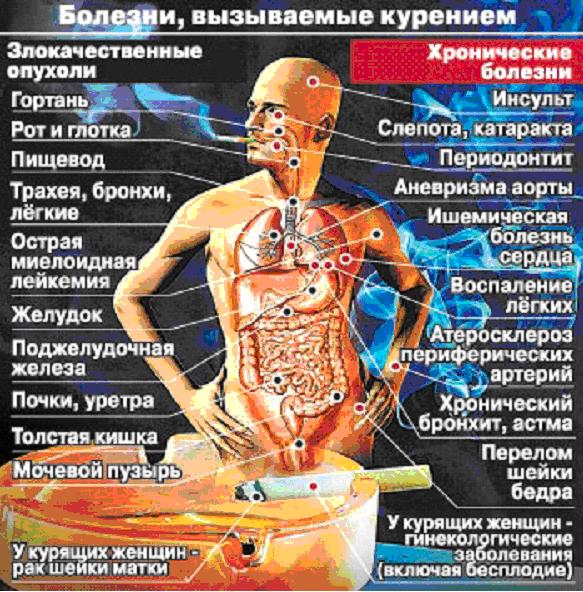 при каких болезнях трясет все тело